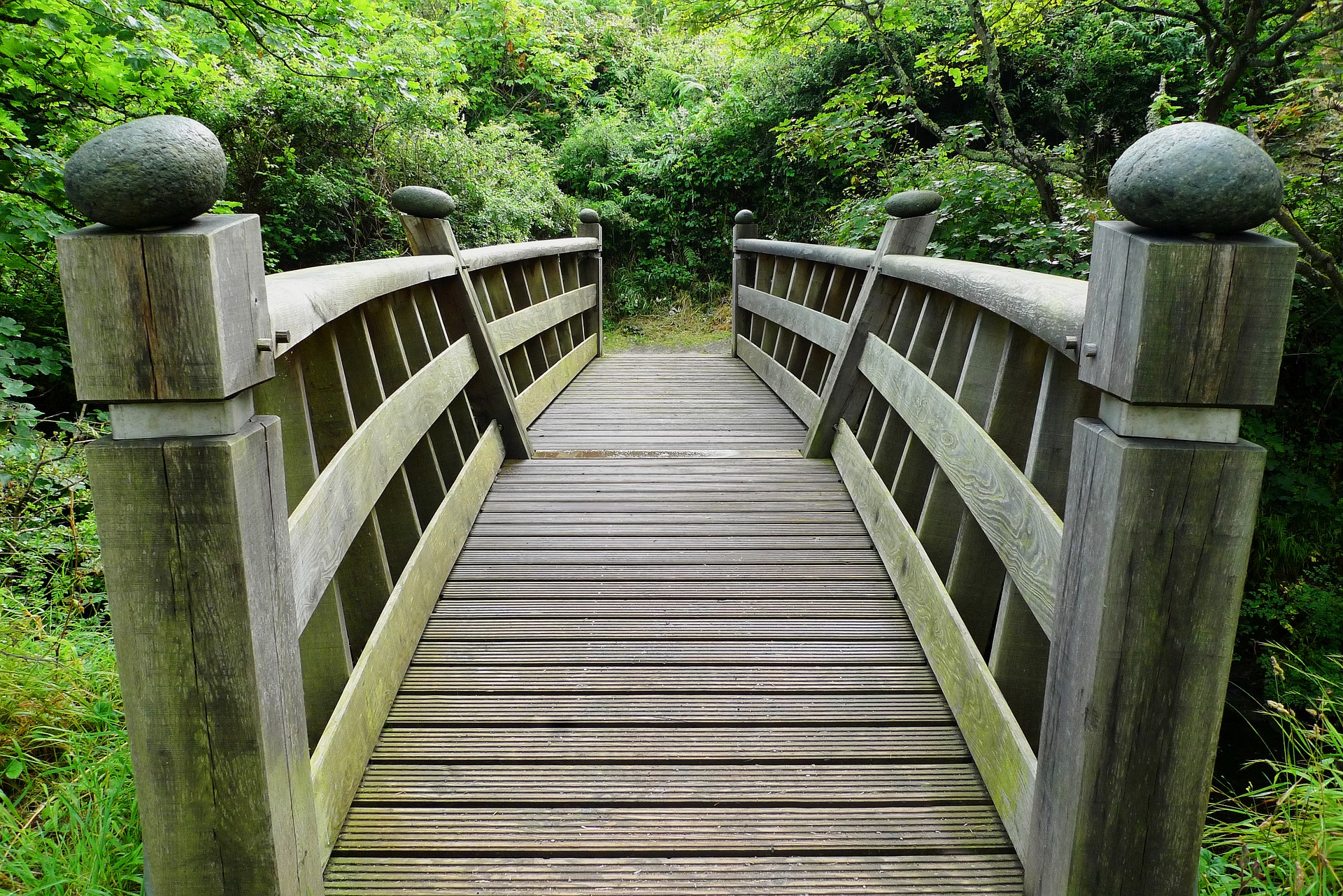simple wooden bridge showing the start of a journey